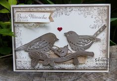 Love the new birds and framelits stampin up sets.