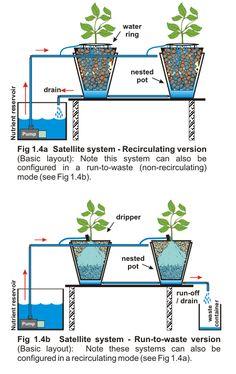 Satellite hydroponic system