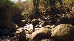 Fotos de: Cáceres - Garganta Beceda - Tornabacas .Valle del Jerte