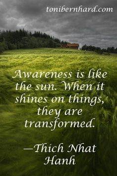 Awareness is like the sun. When it shines on things they are transformed. Thich Nhat Hanh