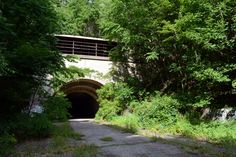 Turnpike tunnel overgrown with vegetation