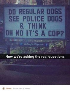 Asking the important questions.