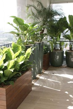 balcony privacy More The post .balcony privacy appeared first on Garden Diy.