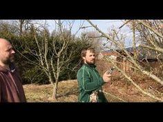 Jak SPRÁVNĚ ostříhat strom - YouTube Gardening For Beginners, Alanya Turkey, Real Estate, Make It Yourself, Youtube, Decor, Decoration, Decorating, Real Estates