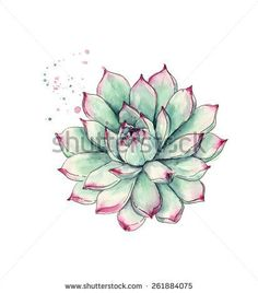 Simple succulent print of original watercolor minimal for Minimal art kunstwerke