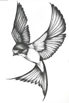 Neck Tattoo For Guys, Half Sleeve Tattoos For Guys, Half Sleeve Tattoos Designs, Tattoo Designs, Half Sleeve Tattoo Stencils, Swallow Bird Tattoos, Bird Tattoo Men, Bird Tattoo Back, Eagle Tattoos