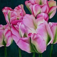 Silk Painting Tulipa Groenland  Leonard Thompson