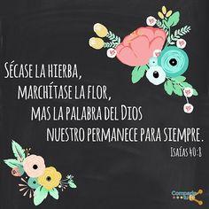 Dios nos ayude a confiar en Su Palabra eterna y verdadera. ¡Feliz domingo amigos! #ComparteTuFe