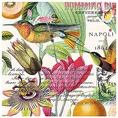 Michel Design Works 20-Count 3-Ply Paper Luncheon Napkins, Neroli
