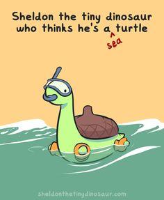 Sheldon the Tiny Dinosaur who Thinks he's a Turtle, , Sea Sheldons by the seashore