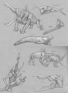 Narakan Snappers: Sketches by M0AI.deviantart.com on @DeviantArt