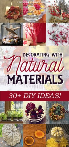 Decorating with Natural Materials - 30+ DIY Ideas!