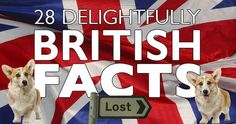 28 Of The Most Delightfully British Facts Ever