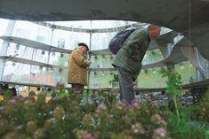 Inside the Flower Pavilion / LAVA #pavilionarchitecture