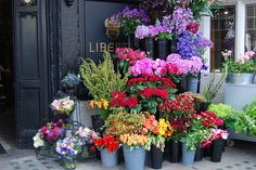 Flower market :) pretty way to decorate for a party. You could do small vases of flowers on a table or small pots of flowers on steps of your house.