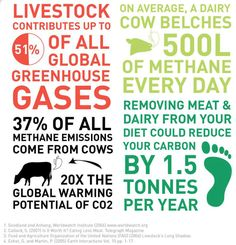 livestock contributes up to 51% of all global greenhouse gases, 37% of all methane emissions, removing meat and dairy could dramatically reduce your carbon footprint, we are all responsible (unfortunately not really accountable) for a healthy environmental #vegan