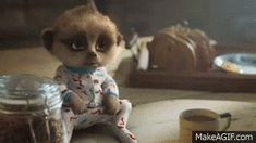 New trending GIF on Giphy lonely miss miss you i miss you my love come back meerkat missing you longing miss u i miss u baby come back baby oleg please come back i missed you so much compare the market compare the meerkat Animiertes Gif, Hug Gif, Animated Gif, Hug Me Please, Please Come Back, Love Comes Back, Baby Come Back, I Miss U, I Miss You Meme