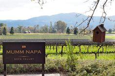 Mumm Napa   Napa Valley
