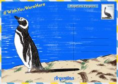 Ahead of World Penguin Day, The Latin America Travel Company have created a guide on where to see penguins in their natural habitats. Penguin Day, Sustainable Tourism, Travel Companies, Latin America, Habitats, Penguins, Natural, Penguin, Nature