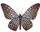 Leopard Print Butterflies