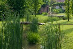 The garden recreated today on the model of medieval gardens   Va certosina