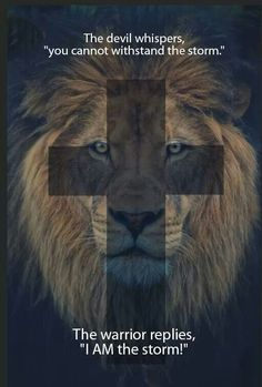 Relying on God, the Father; Christ Jesus, the Son, the Holy Spirit; Jesus is all i need Bibel Journal, Lion Of Judah, Prayer Warrior, Warrior 3, King Of Kings, Lion Kings, Spiritual Inspiration, Christian Life, God Is Good
