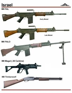 In this image, you may find Israel Rifle Types in it. Weapons Guns, Military Weapons, Guns And Ammo, Rifles, Timberwolf, Battle Rifle, Lethal Weapon, Shooting Guns, Fire Powers