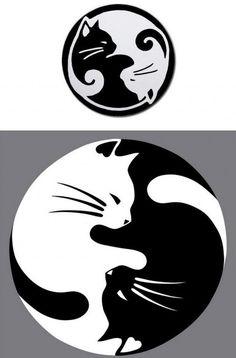 tatouage-chat-modèle-symbole-yin-yang-noir-blanc
