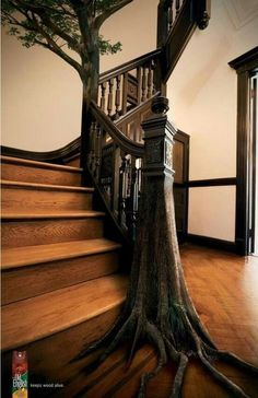 """m4cravings: """"Tree Roots Railing. Wood Carving. Fantasy Stairs. """" Future House, Stair Railing, Banisters, Railing Ideas, Stair Idea, Stairway To Heaven, Natural Home Decor, Staircase Design, Wood Staircase"""