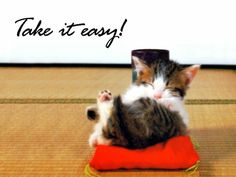 take it easy images - Google Search