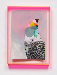 Miranda Skoczek - Abstracted Owl' Mixed media on Arches paper, perspex frame Collages, Collage Art, Photomontage, Arches Paper, Colorful Paintings, Owl Paintings, Painting Art, Pink Art, Owl Art
