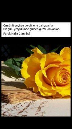 Ölümü geçirse de güllerle bahçıvanlar  Bir gülü yeryüzünde gülden güzel kim anlar? Faruk Nafiz Çamlıbel