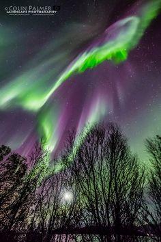 Aurora-Just breathtaking aurora taken by Colin Palmer in Troms Norway.