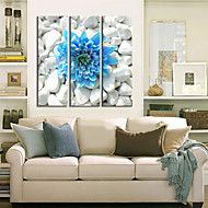 Stretched+Canvas+Art+Floral+Blue+Flower+in+the+St...+–+CAD+$+76.44