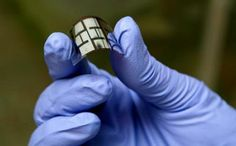 Leaf-Mimicking Solar Cells Generate 47% More Electricity