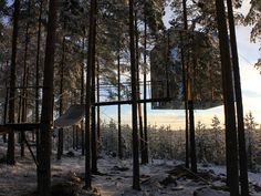 In the Trees: Treehotel, Harads, Sweden What's to love: Five Swedish-designed tree-top suites are nestled in branches outside Harads village (population of 600). The Bird Nest room literally resembles a giant nest. The Mirrorcube reflects the forest around it, making for the perfect camouflage. One last thing to do: See the Northern Lights from the vantage point.