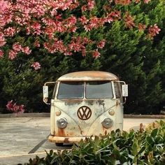 #VW Garden #Bus #ValleyMotorsVW