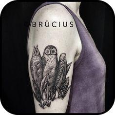 #BRÜCIUS #TATTOO #SF #SanFrancisco #brucius #natural #science #engraving #etching #sculptoroflines #dotwork #blackwork #pen #ink #lines #Magritte #companionsoffear. #owl