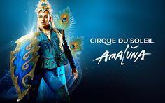 Cirque du soleil: l'innovazione associata al valore apre un mercato pandemico