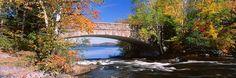 Bridge on Bog River New York State USA http://www.walls360.com/seasons-wall-graphics-s/2002.htm