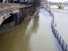 Ça ne sera pas pour cette fois-ci. La grande crue de la Seine ne se produira pas, sauf événement exceptionnel, en ce printemps 2013. Le fleuve, ce jeudi 9 mai, atteindra une cote de 3,40 mètres à Paris, soit un à deux mètres au-dessus de son étiage habituel. C'est suffisamment impressionnant pour garantir quelques gros titres, mais pas assez pour perturber la capitale. http://transports.blog.lemonde.fr/2013/05/08/metro-ferme-rer-inonde-carburant-rationne-quand-la-seine-debordera/