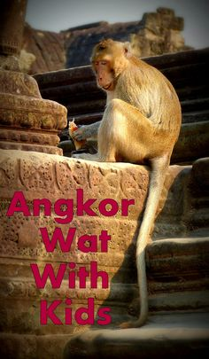 Angkor Wat Cambodia Travel Tips. A Guide to help plan your family travel to Siam Reap Cambodia with kids. http://www.my-family-vacation-ideas.com/angkor-vacation-tour-plan.html