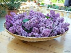 The first edible flower which I've used in the kitchen in this year was lilac. The lilac is rather delicate because it can easily become bit...