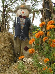 Scarecrows | Hefty Harvest and Scary Scarecrows Family Festival – 9/10 & 9/11 ...