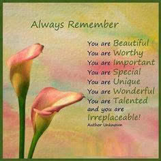 Always Remember You are Beautiful You are Worthy You are Important You are Special You are Unique You are Wonderful You are Talented and you are Irreplaceable! You Are Wonderful, You Are Beautiful, Always Remember You, Life Quotes Love, Kid Quotes, Godly Quotes, Quotable Quotes, Bible Quotes, You Are Important