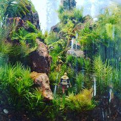 【marolien2】さんのInstagramをピンしています。 《コケテラリウムが密林感出てていい感じになってきました😁✨✨日々成長して楽しい✴「秘境探索」#plants#green#platycerium#moss#mossgarden#lovegreen#indoorgarden#indoorplants#mossterrarium#terrarium#苔#苔テラリウム#コケテラリウム#テラリウム#植物のある暮らし#観葉植物#interior#インテリア#preiser #ジオラマ#プライザー》