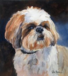Edie Fagan Adored Dogs watercolor portrait of dog watercolor painting of shih tzu dog Perro Shih Tzu, Shih Tzu Hund, Shih Tzu Dog, Shih Tzus, Nature Paintings, Animal Paintings, Watercolor Animals, Watercolor Painting, Paint Your Pet