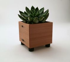 Succulent Planter Pot, Rustic Planter, Reclaimed Wood Mini Cube Succulent Pot, Wood Accent by andrewsreclaimed on Etsy https://www.etsy.com/listing/224502607/succulent-planter-pot-rustic-planter