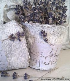 villabarnes: Peat Pots and Lavender