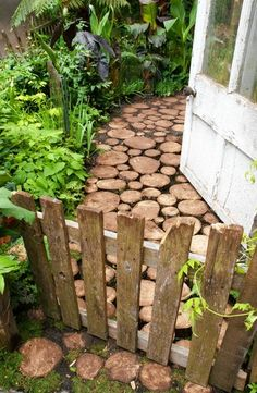 I like the little gate from pallet boards